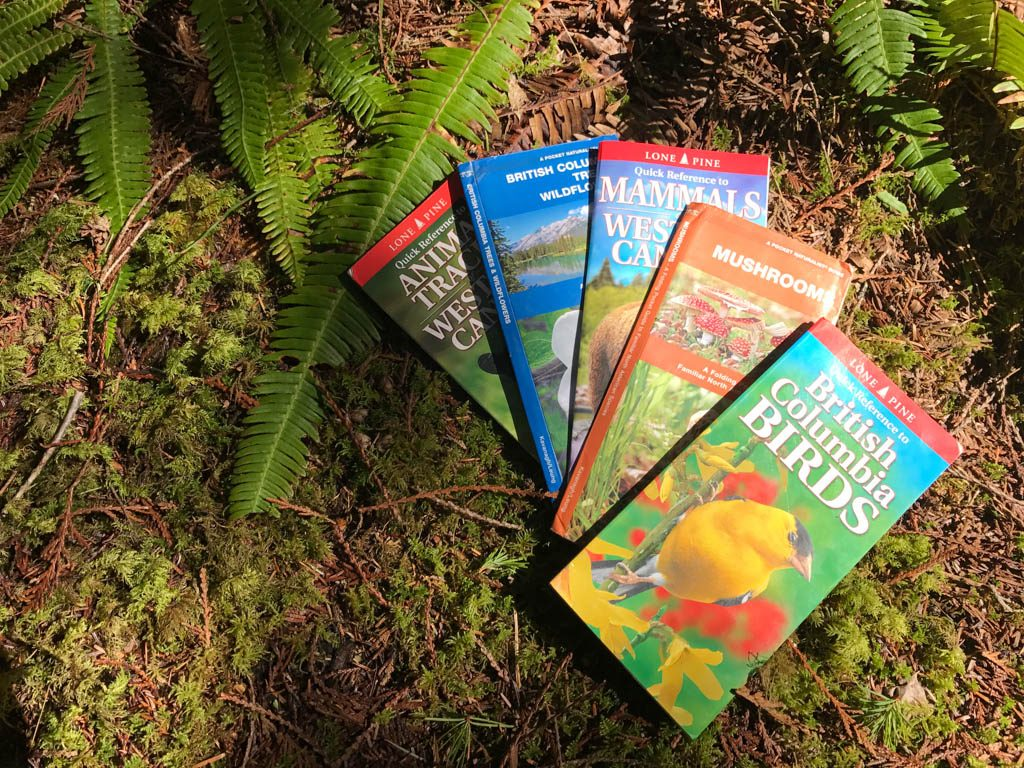 bird-and-plant-identification-books