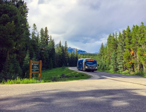 Explore Banff National Park by Bus