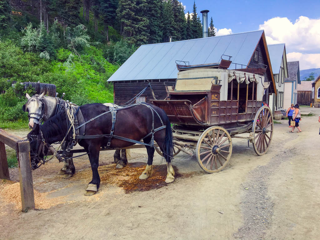 stagecoach-rides-horse-and-carriage-barkerville