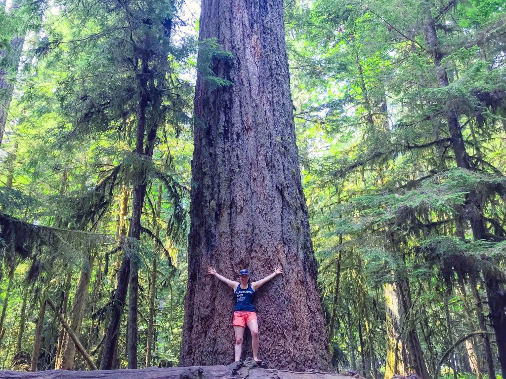 woman-in-front-of-huge-tree