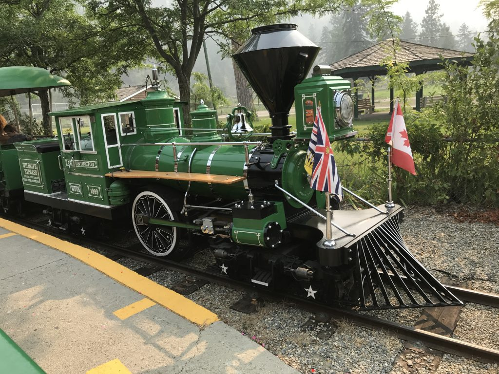 train-at-bc-wildlife-park
