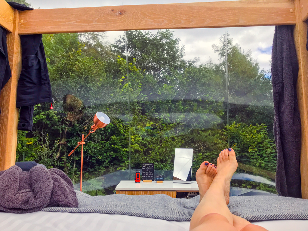 view-from-bed-in-bubble-dome