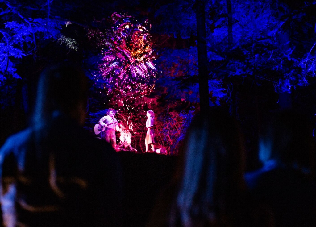 vallea-lumina-hologram