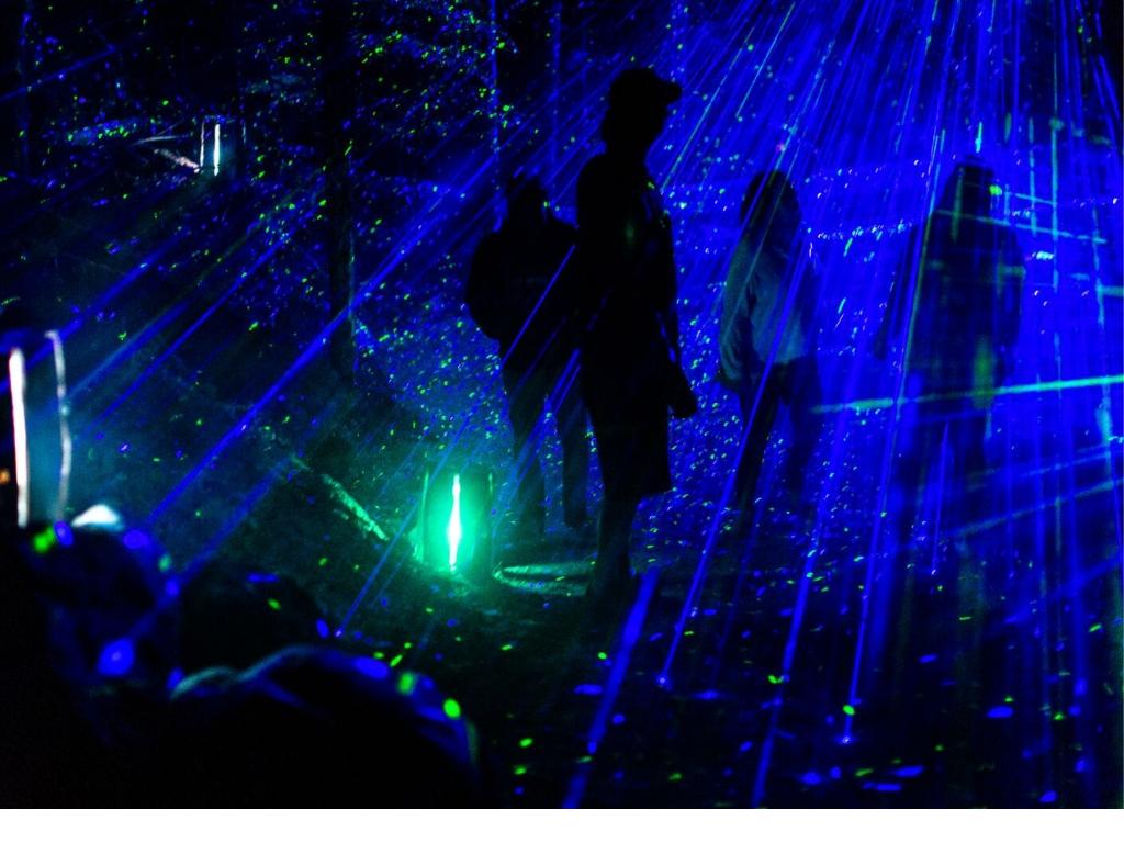 vallea-lumina-nightwalk