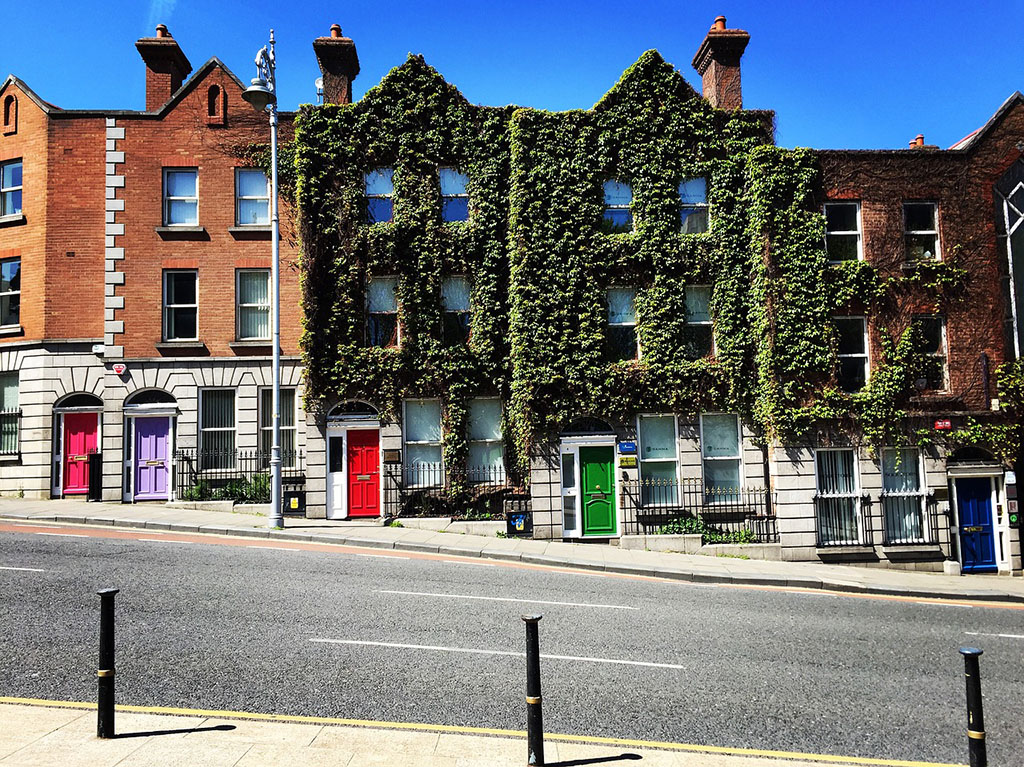 Vine covered building in Northern Ireland