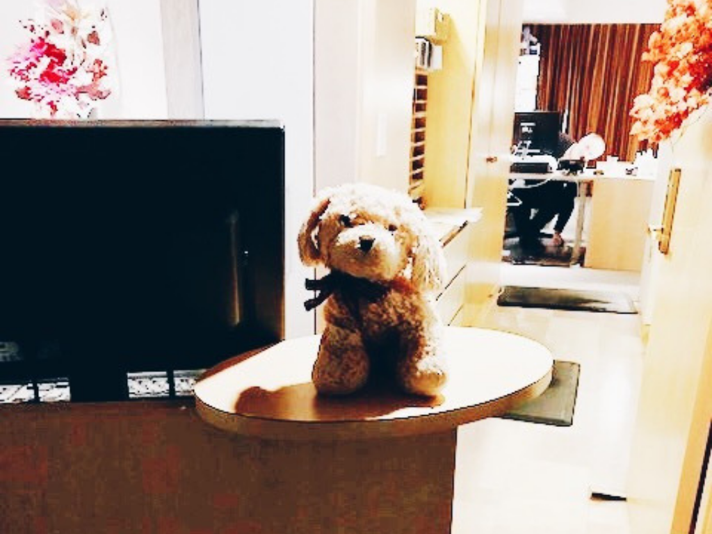 stuffed-puppy-on-front-desk-of-inn-at-laurel-point