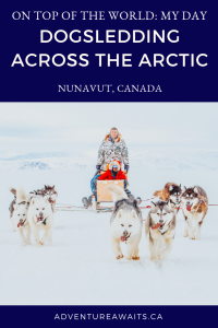 people-dogsledding-across-the-arctic