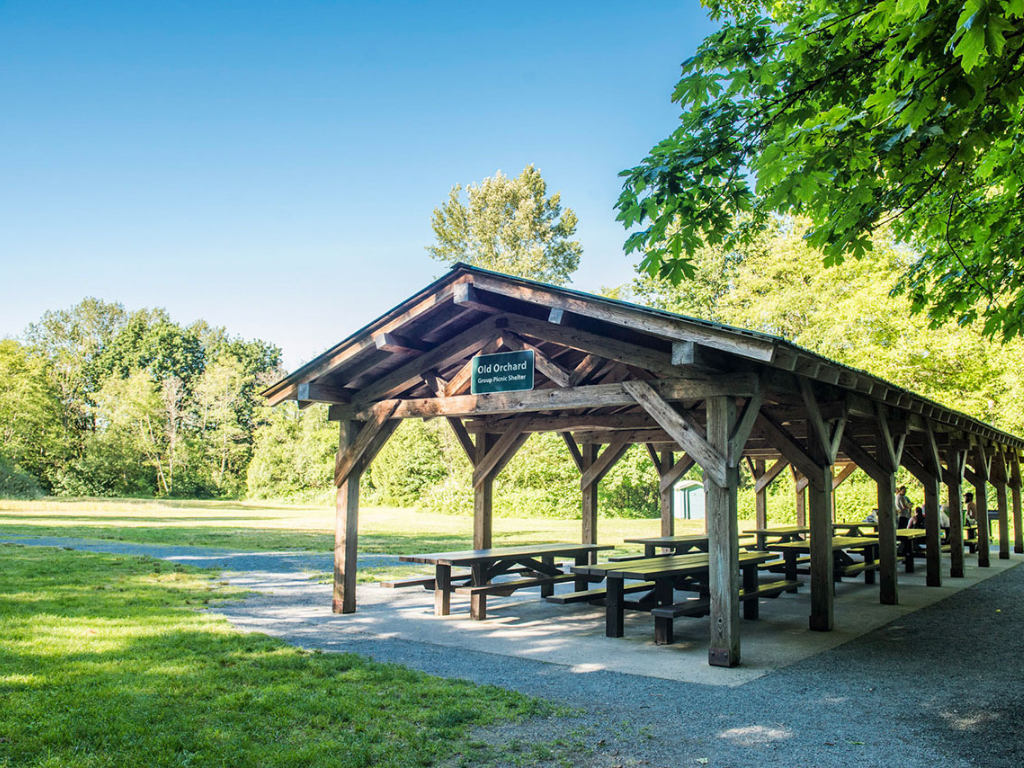 covered picnic area at campbell valley regional park Where to have a campfire in Vancouver