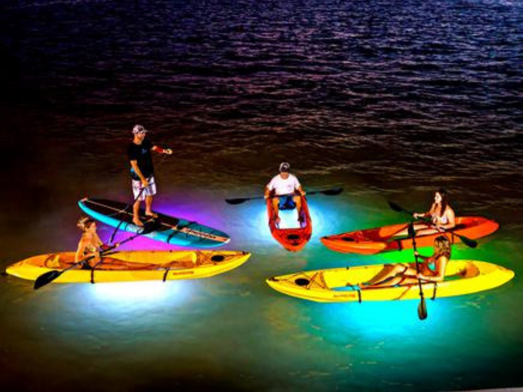 people on a Night Paddleboarding Vancouver tour
