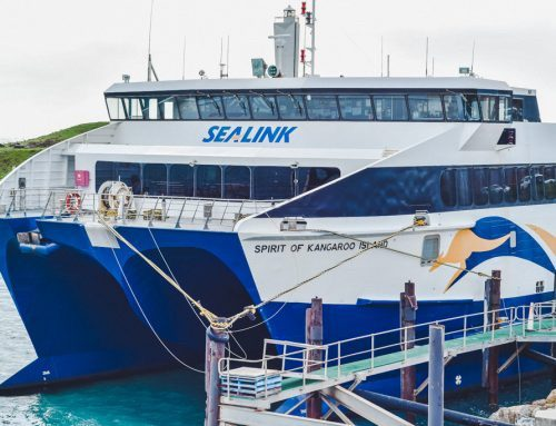 Our SeaLink to Kangaroo Island Ferry Adventure