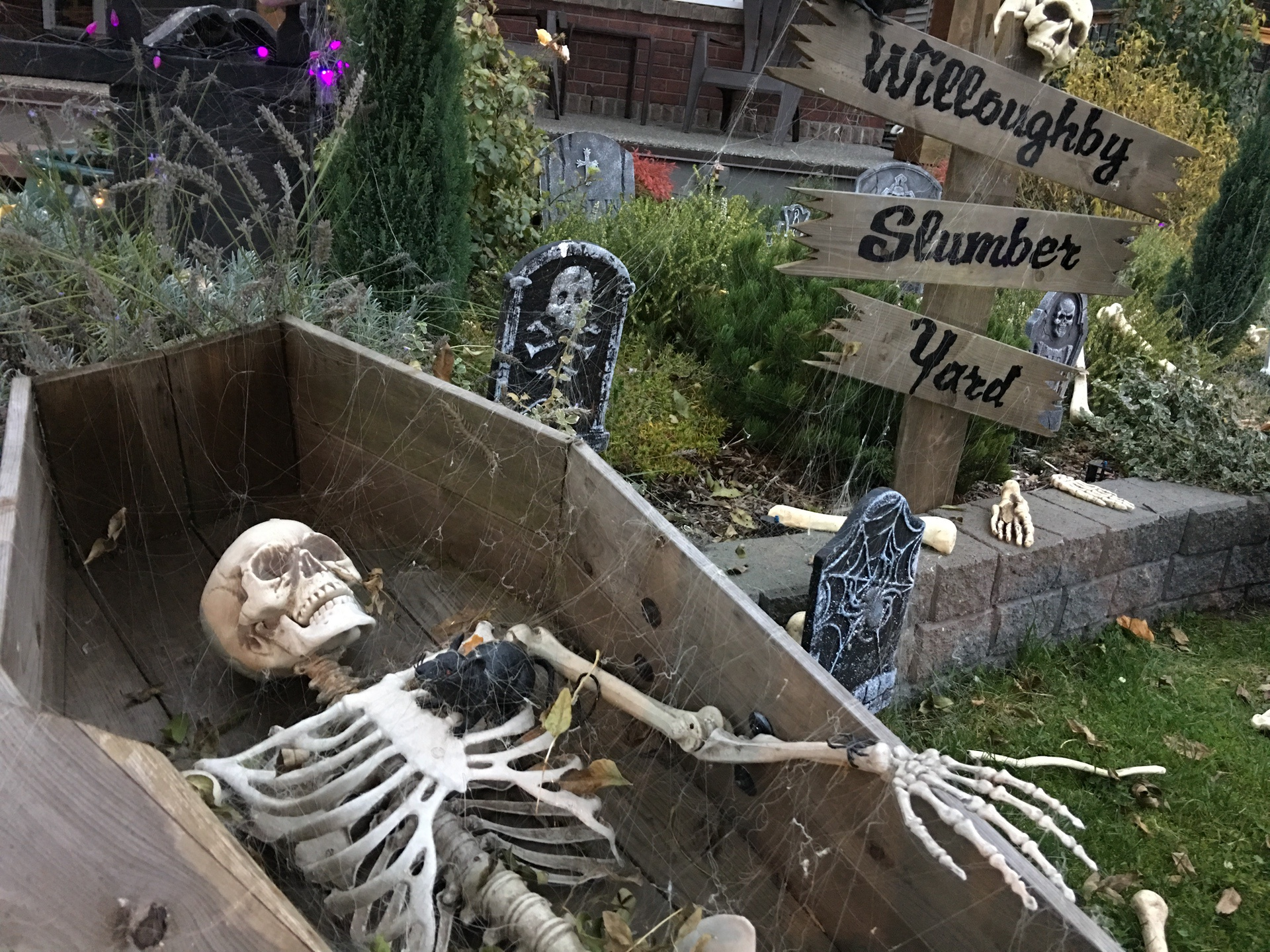 skeleton-in-a-graveyard