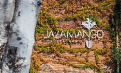 Jazamango in Todos Santos