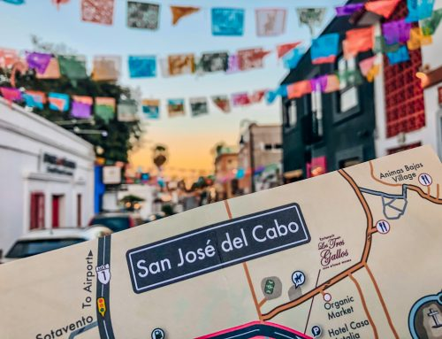 San Jose del Cabo Walking Tour – Gallery District