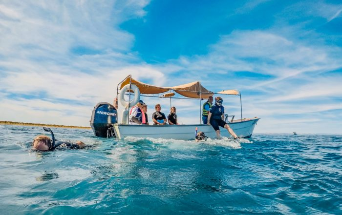 Things to do in Cabo with kids - boat on the water