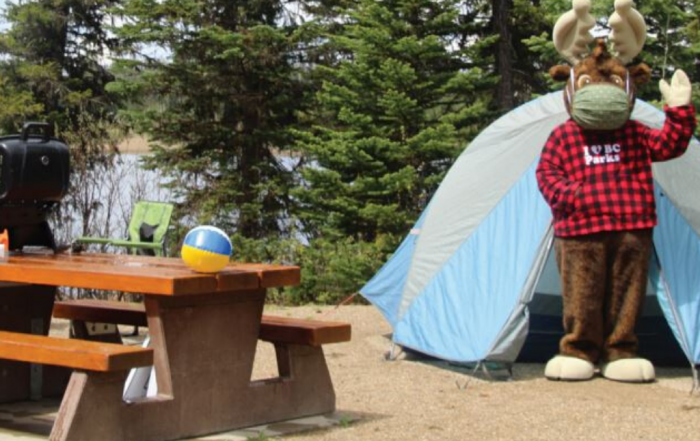 Top 10 Camping Tips for 2020