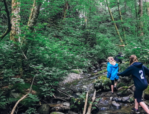 Top 5 Outdoor Educational Adventure Locations in the GVRD