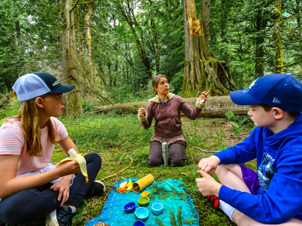 Children having a tea ceremony during Forest Bathing in Harrison