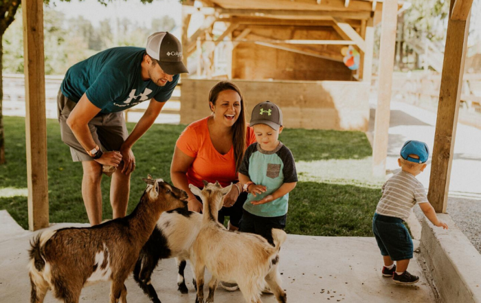 Family friendly petting zoo at a Langley farm tour