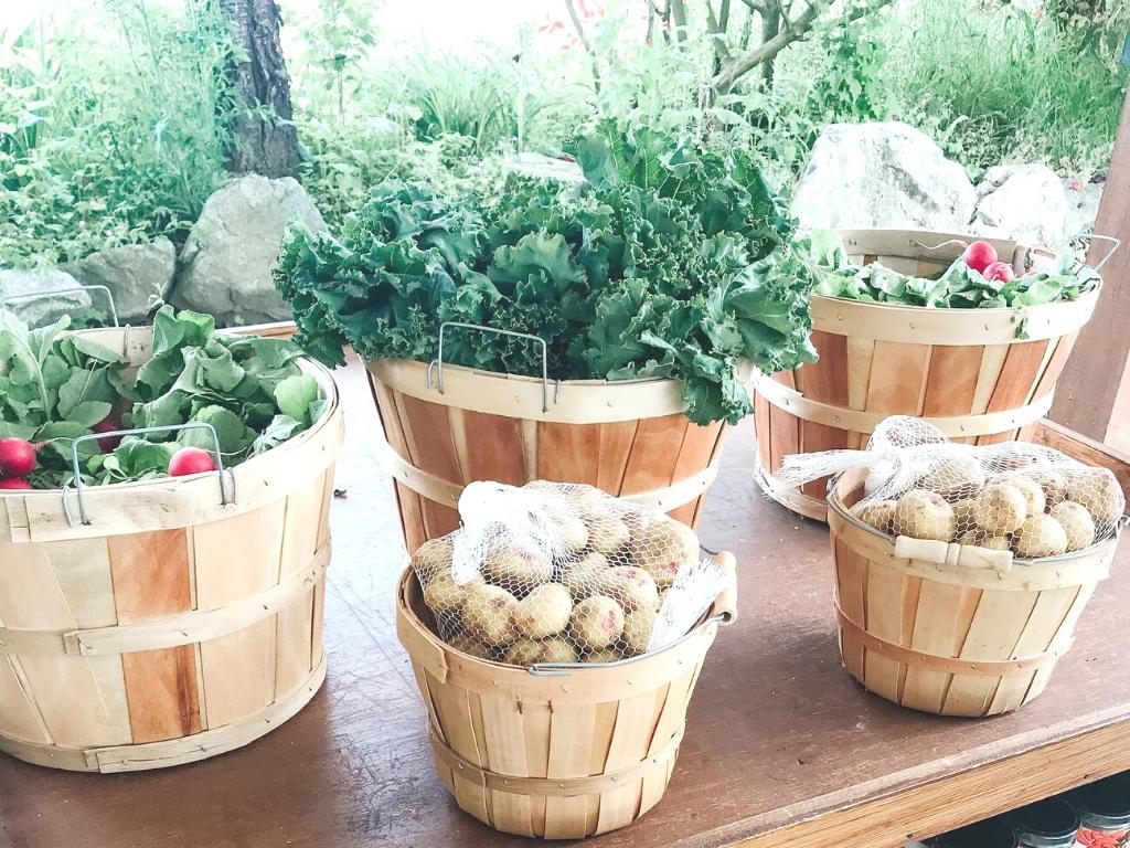 Fresh produce for sale on a Langley farm tour