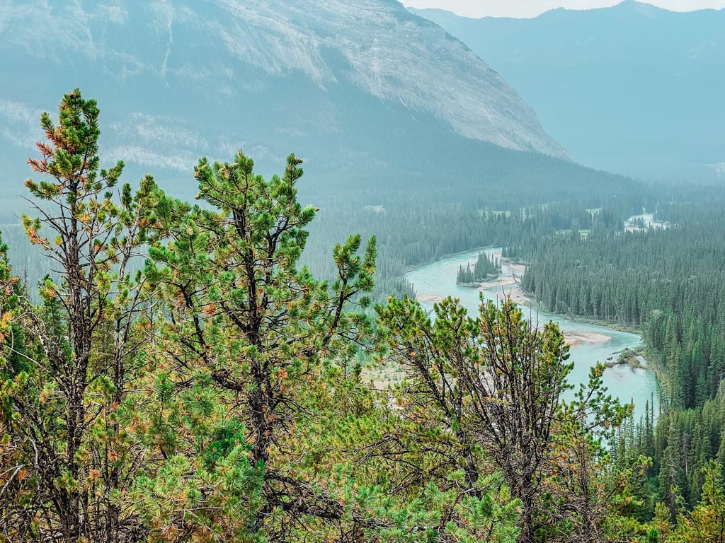 view of the river valley from a lookout point on tunnel mountain
