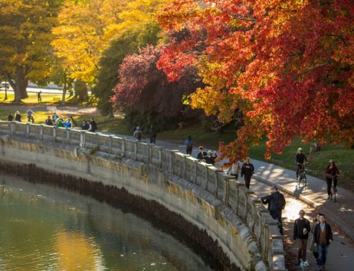 9 Fun Fall Family Day Trips Around Vancouver To Embrace The Changing Seasons