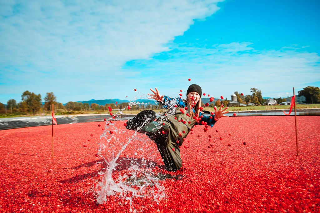 Cranberry Plunge at The Riverside Bog